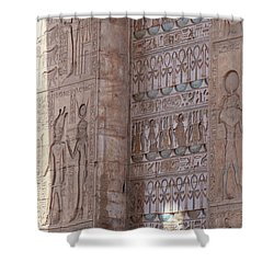 Shower Curtain featuring the photograph Egyptian Hieroglyphs by Silvia Bruno