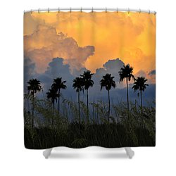 Eight Palms Shower Curtain by David Lee Thompson