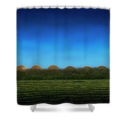 Eight Rolls Shower Curtain