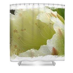 Eileen Shower Curtain by Priscilla Richardson