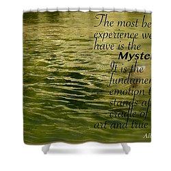Einstein Mysterious Shower Curtain