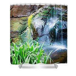 El Paso Zoo Waterfall Long Exposure Shower Curtain