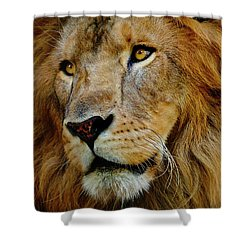 Shower Curtain featuring the photograph El Rey by Skip Hunt