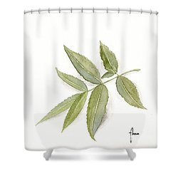 Elderberry Leaf Shower Curtain by Annemeet Hasidi- van der Leij