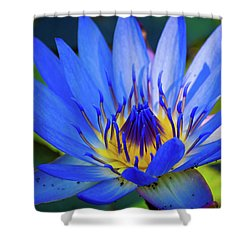 Electric Lily Shower Curtain