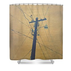 Electrified Shower Curtain
