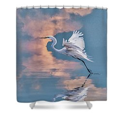 Elegance Shower Curtain by Brian Tarr