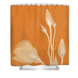 Elegance In Apricot Shower Curtain