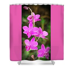 Elegance In Nature Shower Curtain by Sue Melvin