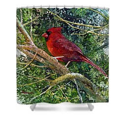 Elegance In Red Shower Curtain by Hailey E Herrera