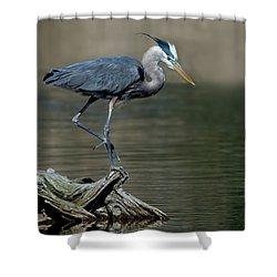 Elegant Blue Heron Shower Curtain