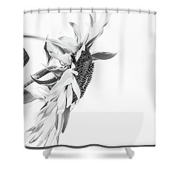 Elegant Coif 2 - Shower Curtain