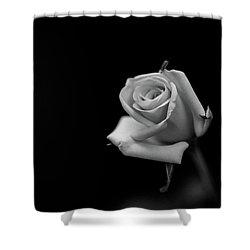 Elegant Shower Curtain by Hyuntae Kim