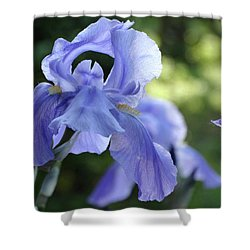 Shower Curtain featuring the photograph Elegant Iris In Spring by Rebecca Overton