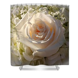 Elegant White Roses Shower Curtain by Cynthia Guinn