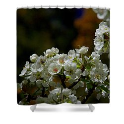 Elegantly White Shower Curtain by Vicki Pelham