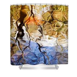 Elementals Shower Curtain by Joanne Baldaia - Printscapes