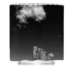 Elephant Butte In Black And White Shower Curtain