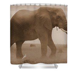 Elephant Dust Shower Curtain