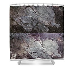 Elephant Formation  Shower Curtain