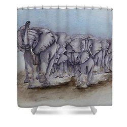 Elephant Herd Gallop Shower Curtain