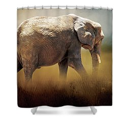 Shower Curtain featuring the photograph Elephant In The Mist by David and Carol Kelly