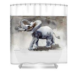 Elephant Light Study  Shower Curtain by Amy Kirkpatrick