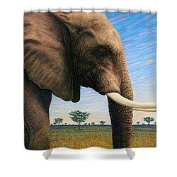 Elephant On Safari Shower Curtain by James W Johnson