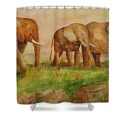 Elephant Parade Shower Curtain