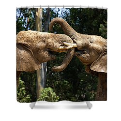 Elephant Play Shower Curtain