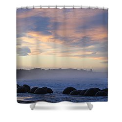 Elephant Rocks Shower Curtain