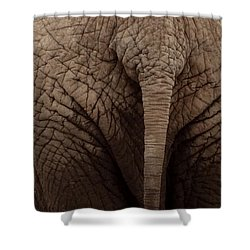 Elephant Tail Shower Curtain