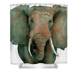 Elephant Up Close Shower Curtain