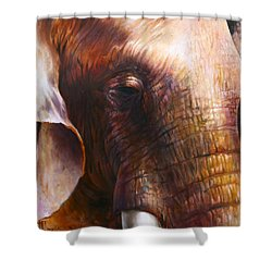 Elephant Empathy Shower Curtain