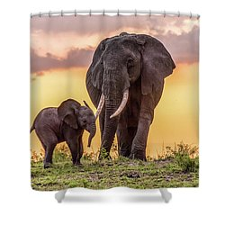 Elephants At Sunset Shower Curtain
