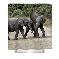 Elephants Childs Play Shower Curtain