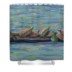 Eleven Turtles Shower Curtain