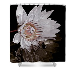 Elizabeth's Lily Shower Curtain