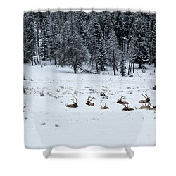 Elk - 9134 Shower Curtain
