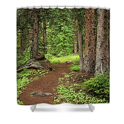 Elk Camp Trail Shower Curtain by Adam Pender