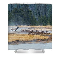 Elk Crossing Shower Curtain