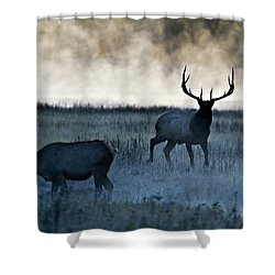 Elk In The Mist Shower Curtain