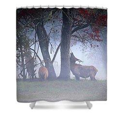 Elk Neck Scratch Shower Curtain