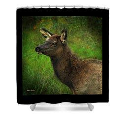 Elk Of Benezette Shower Curtain