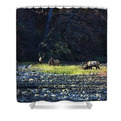 Shower Curtain featuring the photograph Elk River Crossing At Sunrise by Michael Dougherty
