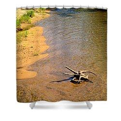Elk River Driftwood Shower Curtain