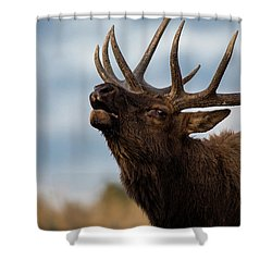 Elk's Screem Shower Curtain by Edgars Erglis