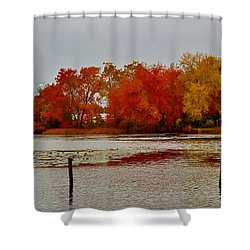 Shower Curtain featuring the photograph Elmer Lake In Autumn by Ed Sweeney