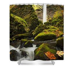 Elowah Autumn Shower Curtain by Mike  Dawson