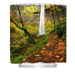 Elowah Autumn Trail Shower Curtain by Mike  Dawson